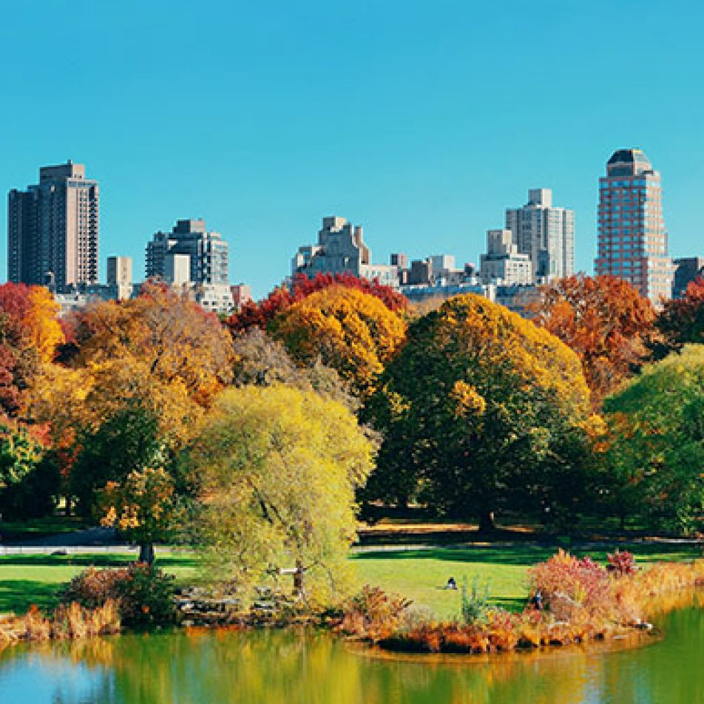 View of New York City from a pond in Central Park