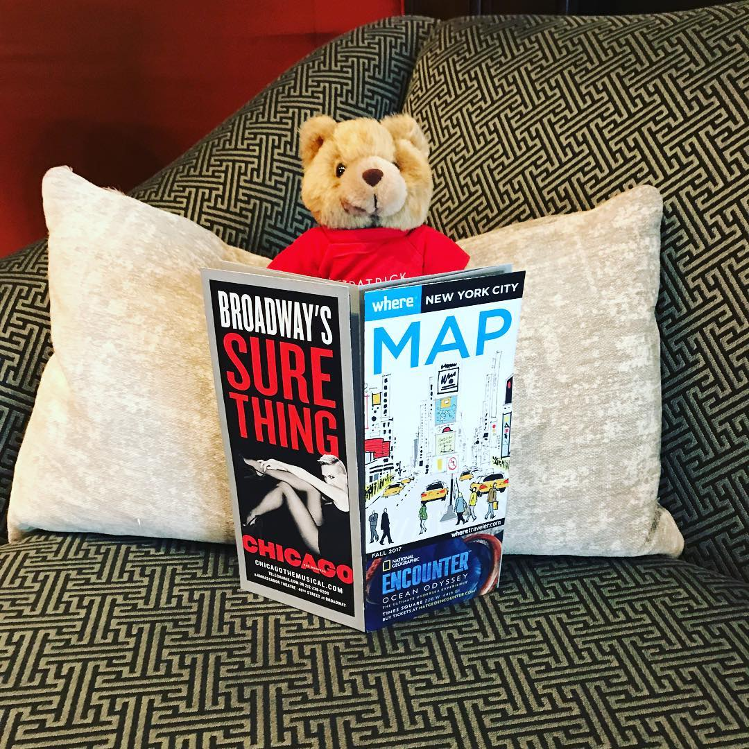 Teddy bear Teddy Fits with a map of New York seated on a patterned couch