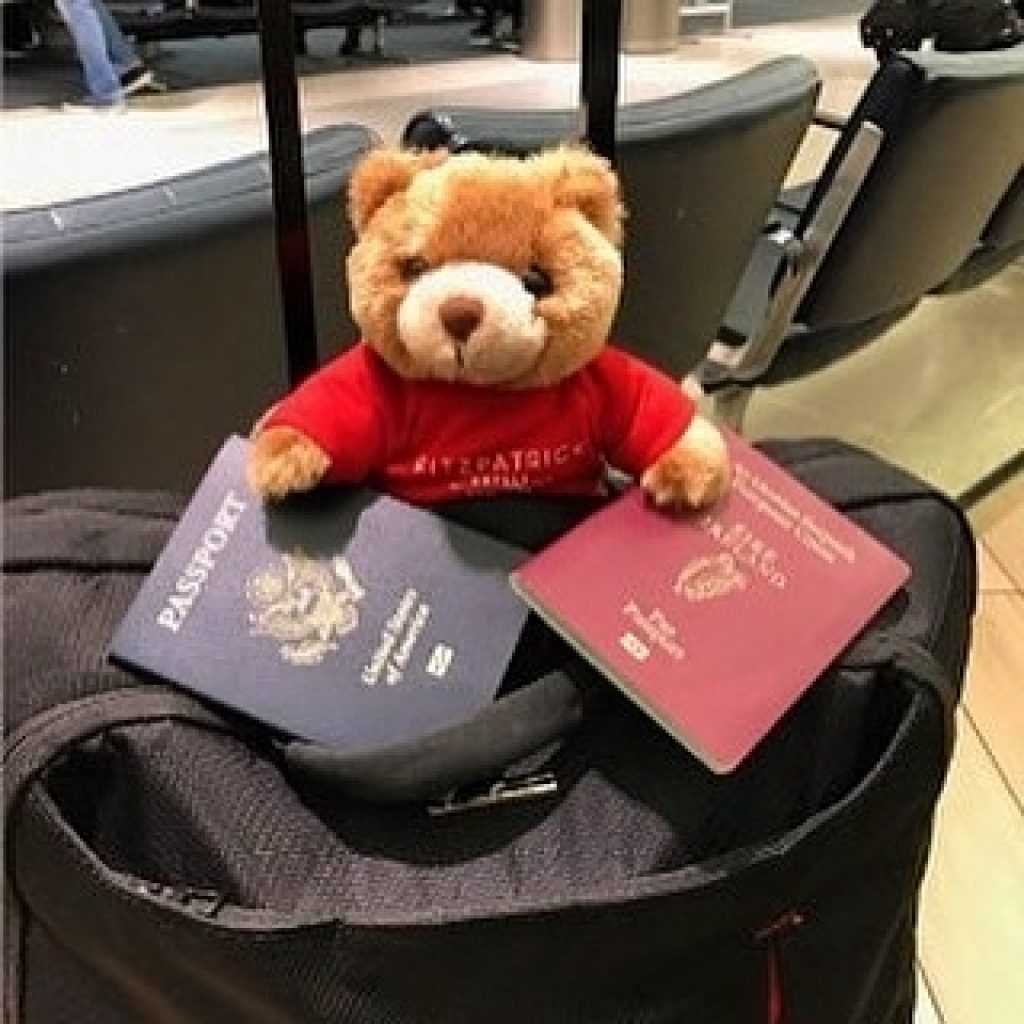 Teddy bear Teddy Fits in bag with two passports