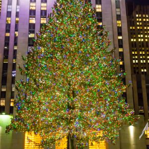 Famous Christmas Tree at the Rockefeller Center