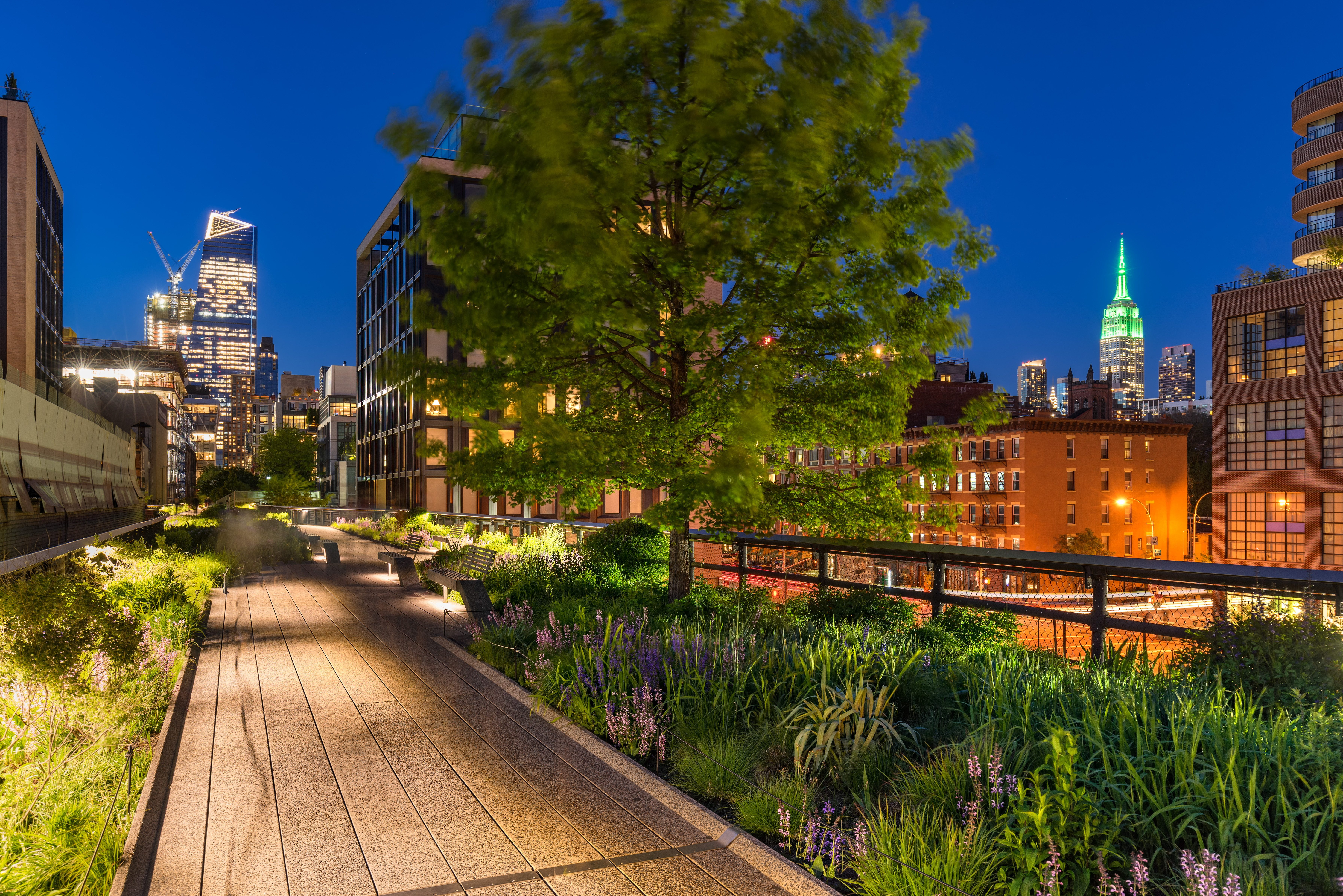 Outdoor New York bench and green flowers under street lights