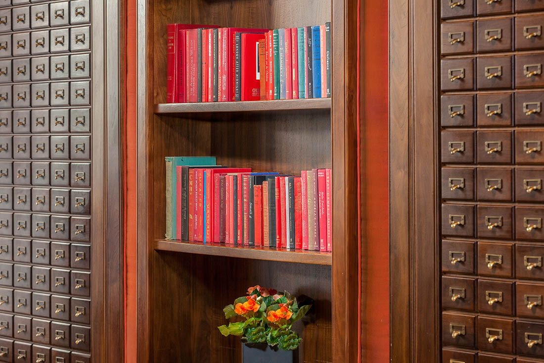 Wooden wall bookcase with well-organised books and flower pot on bottom shelf.