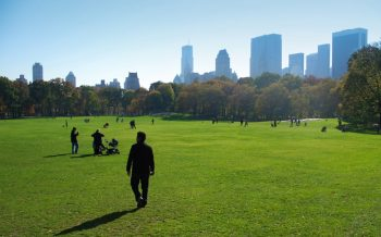 Family and park goers in green grass at Central Par in New York city