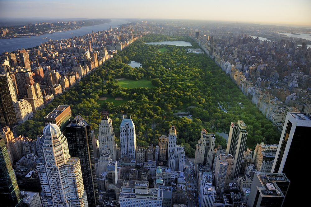Aerial view of green grass and trees in Central Park framed by New York high-rises