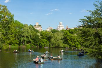 People on boats on a pond in Central Park amongst green trees under a clear blue sky