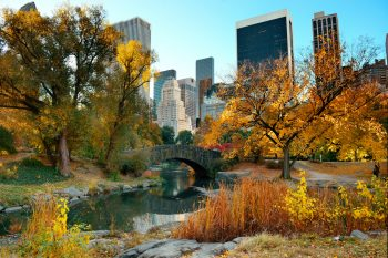 Central Park in autumn with New York skyline in the background