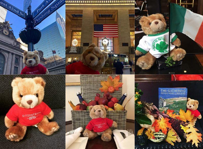 Teddy Fitz's Travels